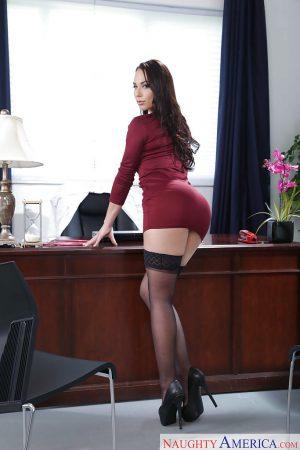 segretaria sexy immagine 15