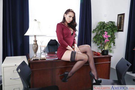segretaria sexy immagine 11