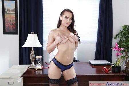 segretaria sexy immagine 3
