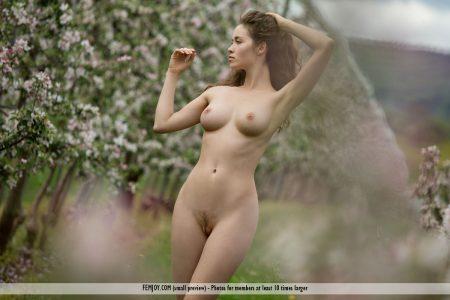 bocciolo di mela Vika A. immagine 10