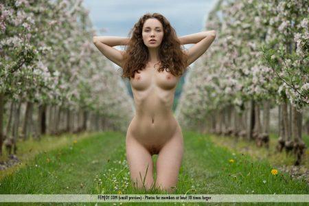 bocciolo di mela Vika A. immagine 13