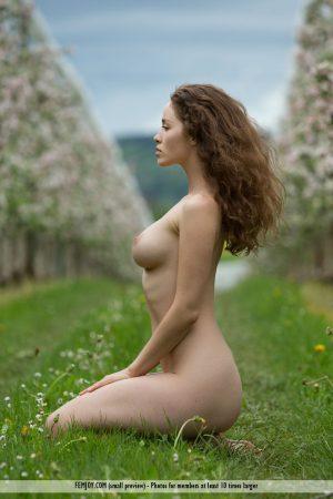 bocciolo di mela Vika A. immagine 14