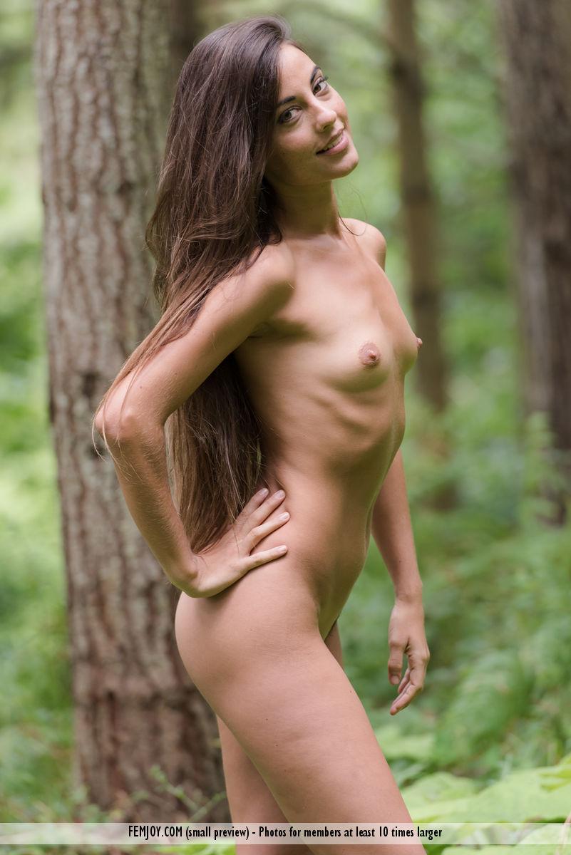 Deep Woods Lorena G. immagine 15