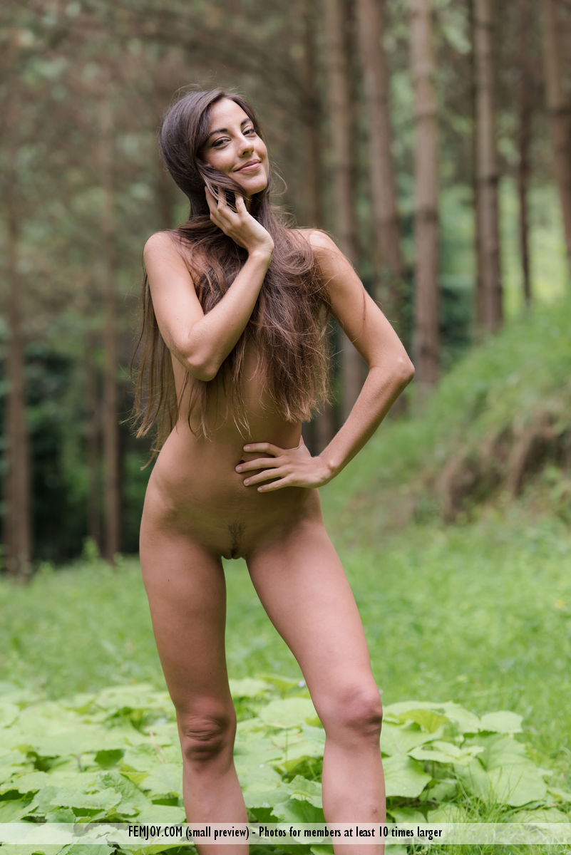 Deep Woods Lorena G. immagine 1