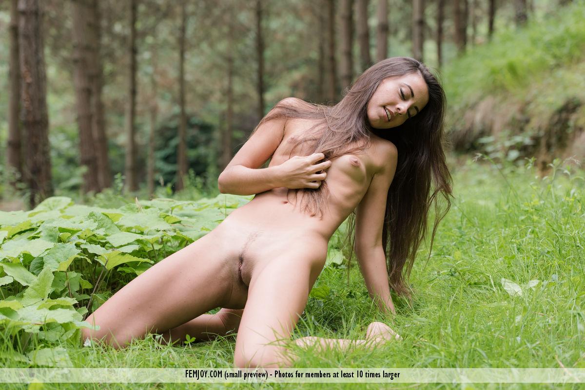 Deep Woods Lorena G. immagine 5