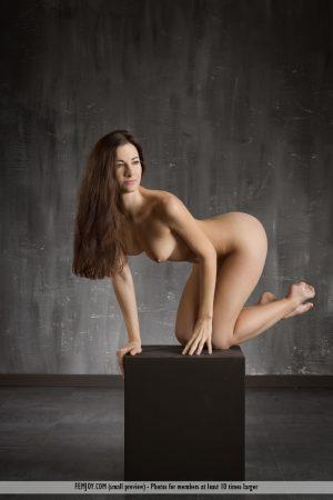 Art nude Lauren immagine 9