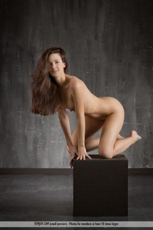 Art nude Lauren immagine 10