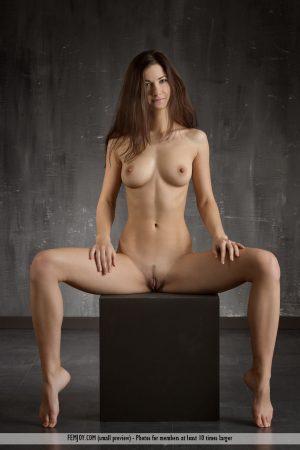 Art nude Lauren immagine 11
